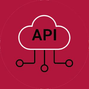 API Automatic Testing